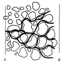 扩散(diffusion)和弥散(dispersion)有什么区别?插图1
