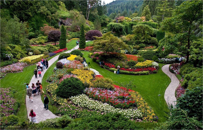 植物配景与造景_(园林造景)景观植物的应用——如何表达?