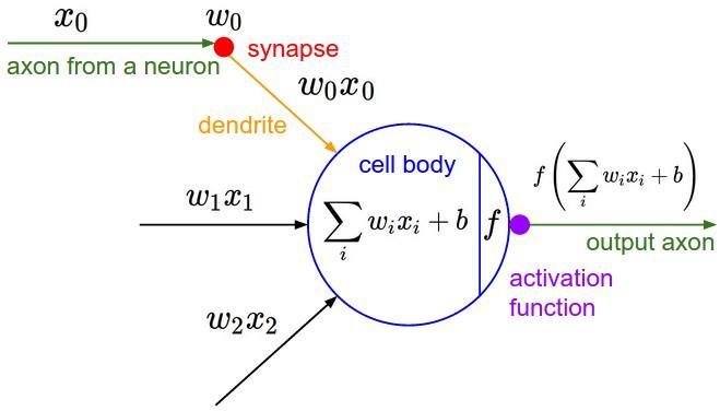 聊一聊深度学习的activation function