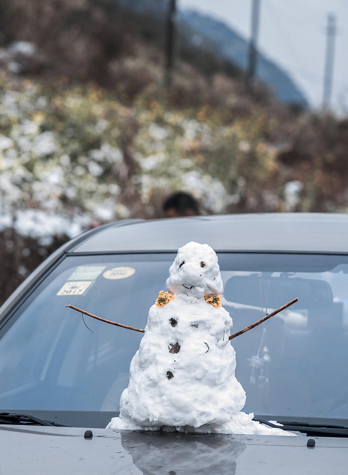 这个暖冬,寒潮为何如此猛烈?
