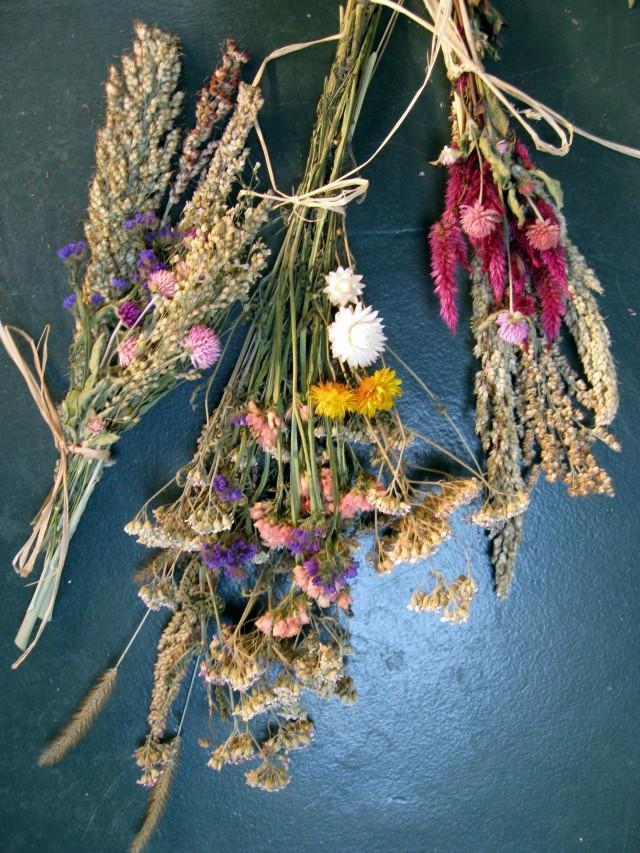 Картинки с сушеными цветами, татьяна