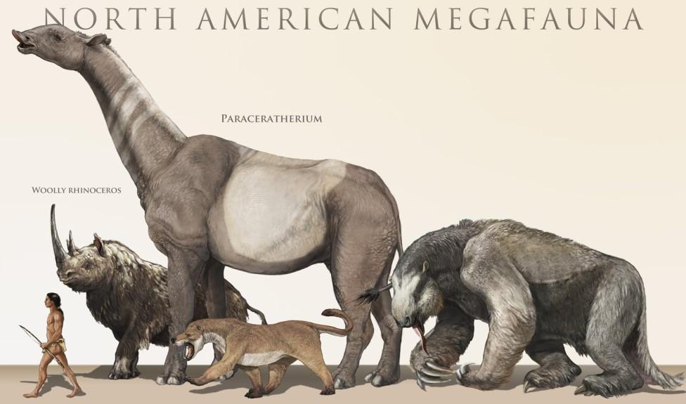 为什么现在的动物不如恐龙那样巨大?