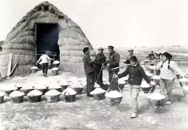 最后的盐町,金厢镇晒盐历史可追溯到雍正时期...