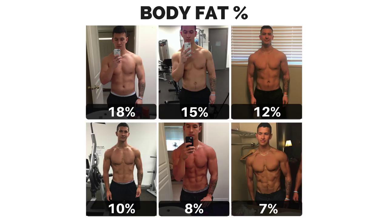 脂肪 男 体 率