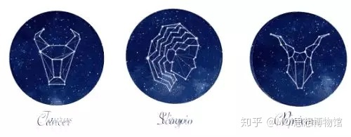 十二星座适合的舞蹈�D�D土象星座(什么是土象星座)