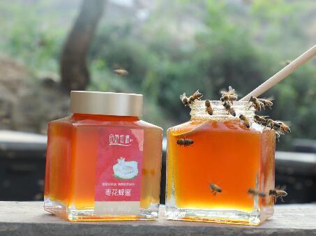 為什么蜂蜜是甜蜜的?真正的蜂蜜甜蜜嗎?