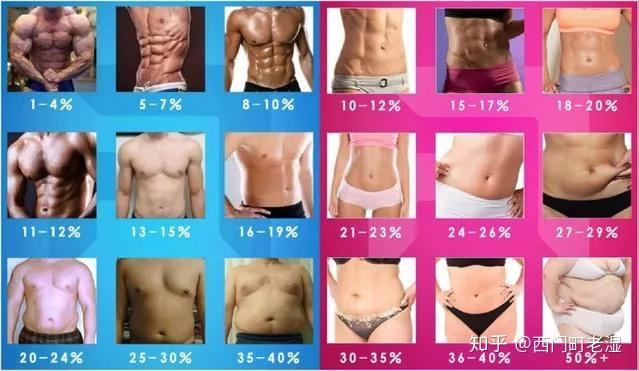 体脂率只有4%的男人,我敢保证你看完都会弯- 知乎