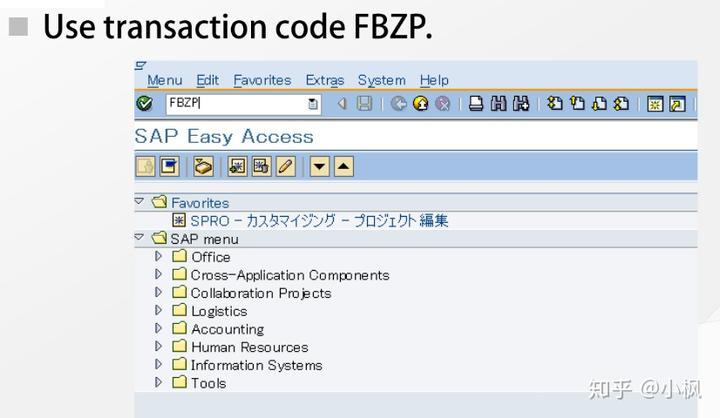 SAP FICO Lecture 17_Payment - 知乎