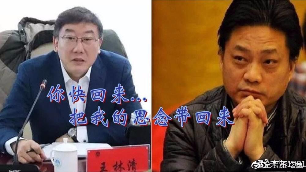 王林清或将锒铛入狱,崔永元继续逍遥法外