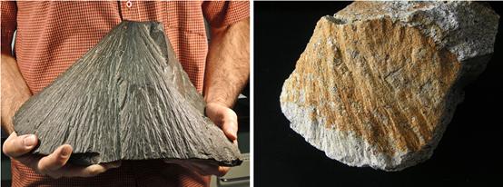 芬兰新发现了一个陨石坑!在地球上找个坑怎么就这么难?