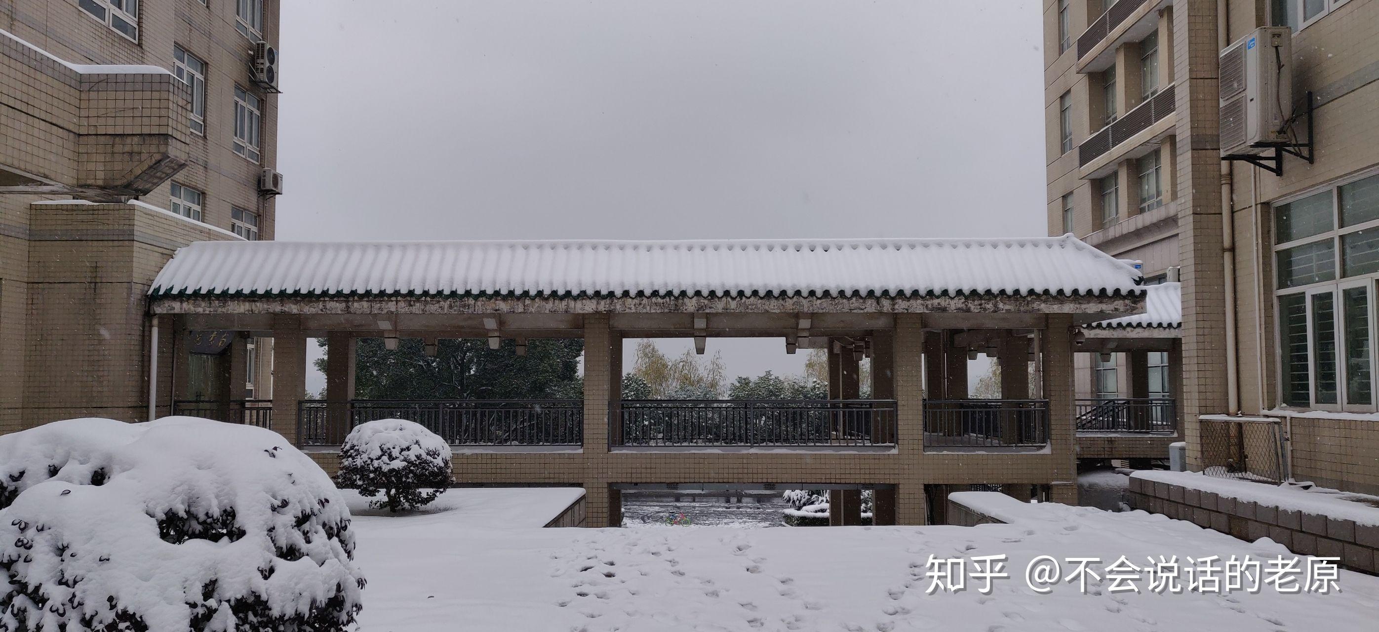 中南大学宿舍图片内景