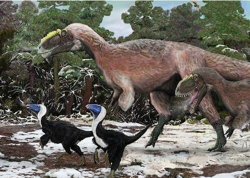 大白课|原来恐龙也是长毛的呀!你知道羽毛怎么来的吗?