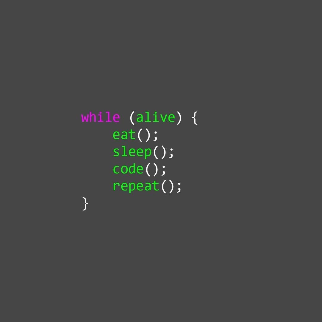 前端源码学习