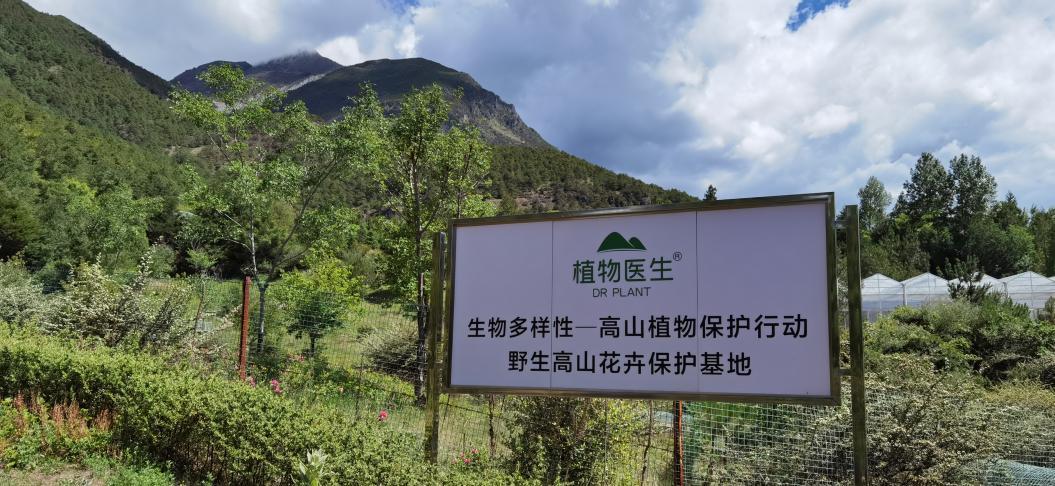 立足生物多样性保护领域 植物医生助力生态文明建设