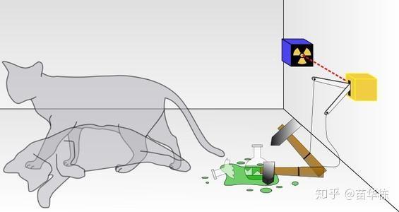 薛定谔的猫到底是什么意思?