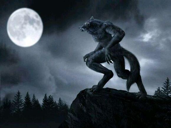 从萌新到入门—我对狼人杀的粗浅理解<1>